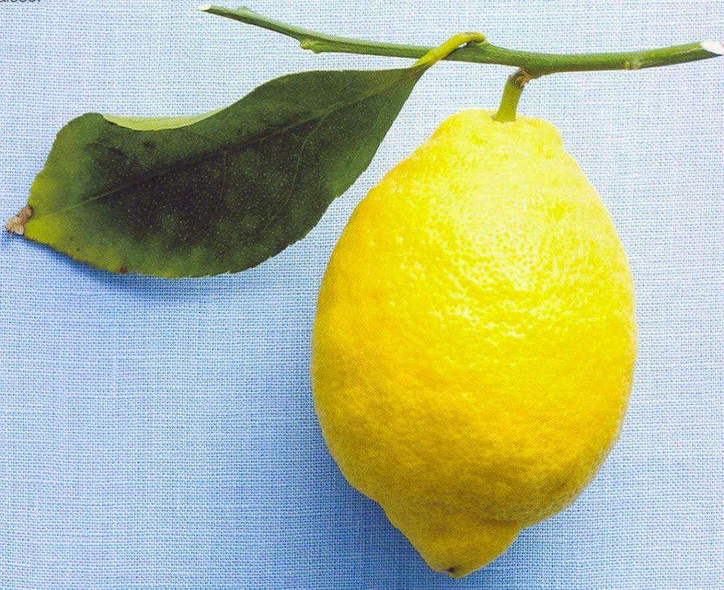 Лимон - продукт против старения, богат витамином С, антиоксидантами, лимонныммаслом, флавоноидами, лимонной кислотой и другими растительными кислотами