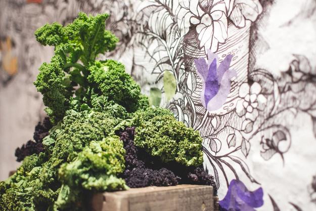 foodiesfeed.com_капуста
