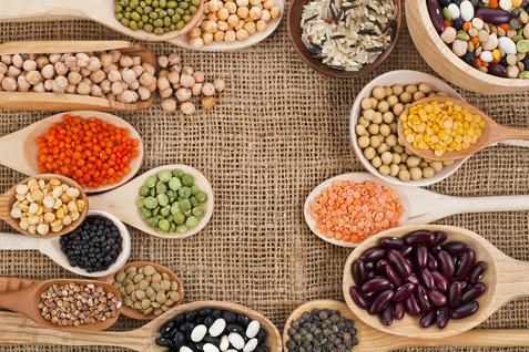 вегетарианские протеины