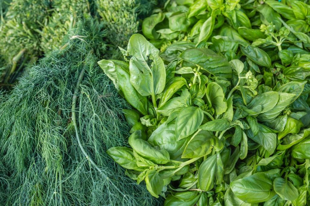 травы и питания - главные способы устранения и лечения молочницы и кандиды